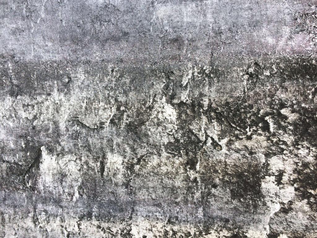 外壁塗装 カビが生えた壁