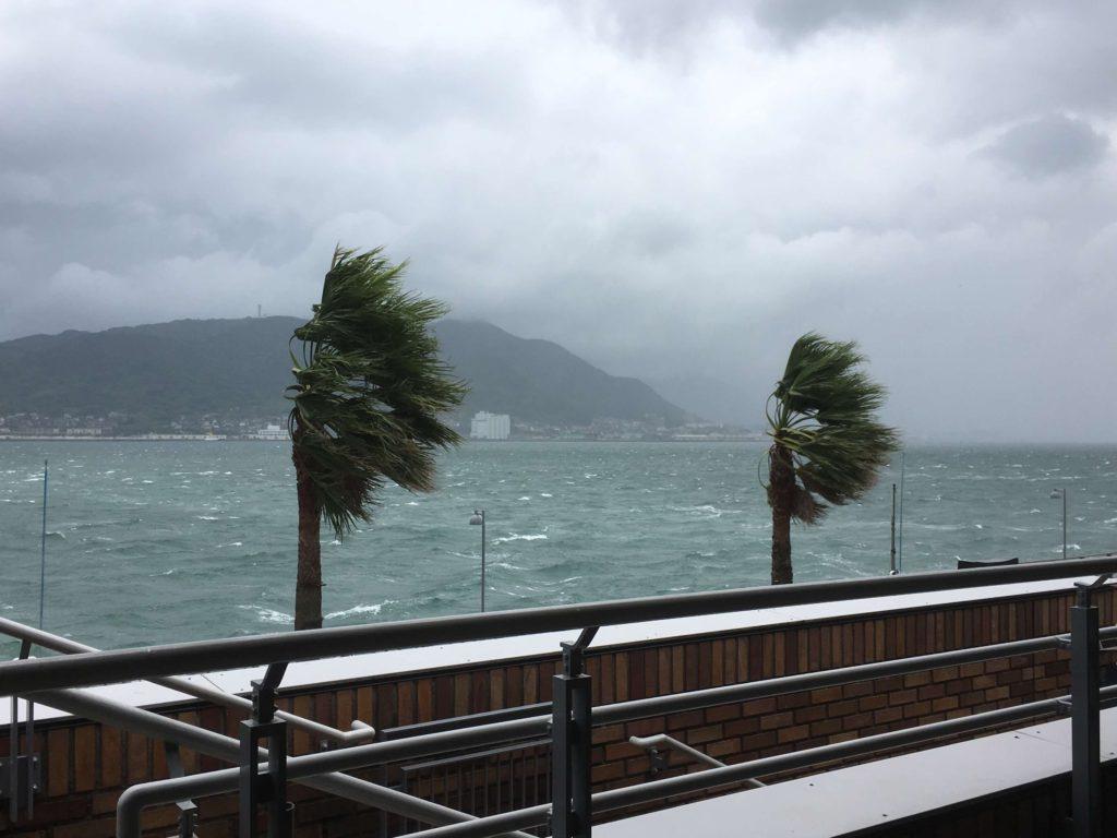 強風・台風