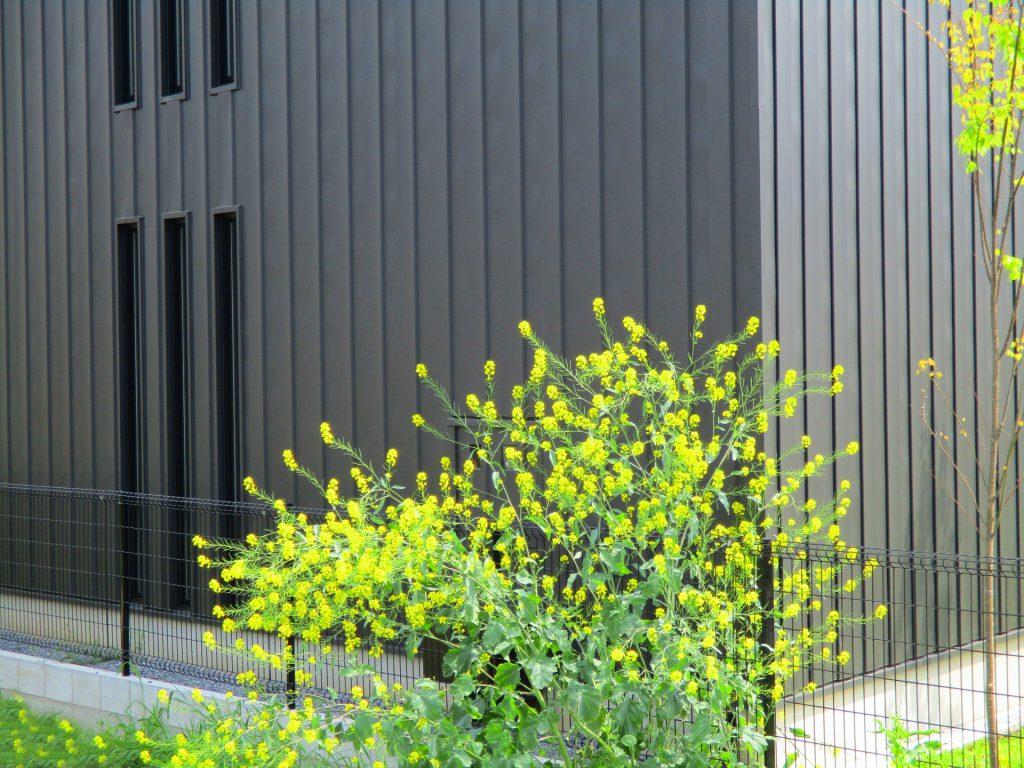 ガルバリウム鋼板 グレーの外壁