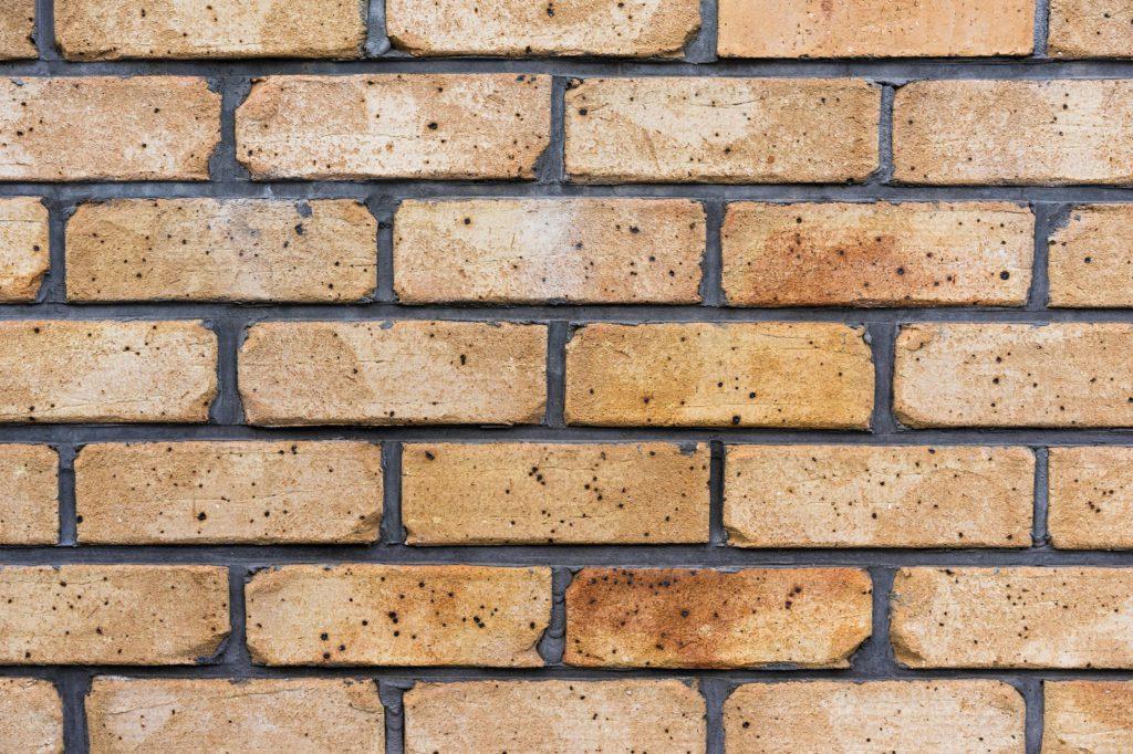 レンガ外壁 ベージュ系