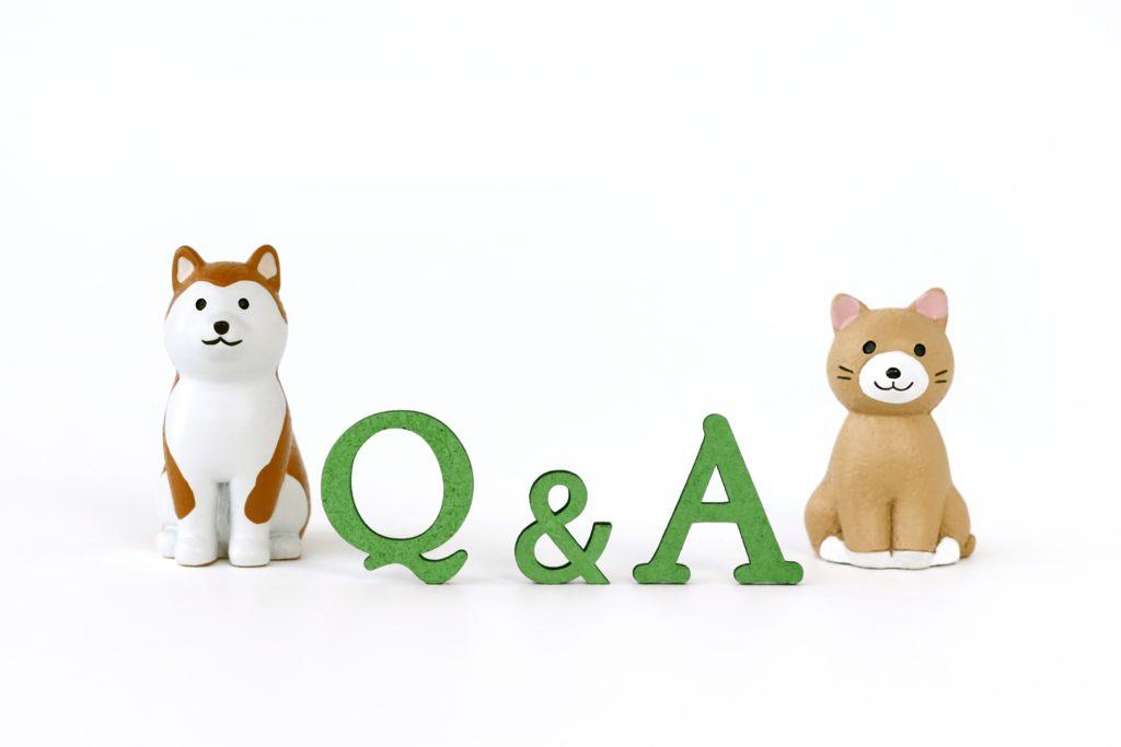 猫 犬 Q&A