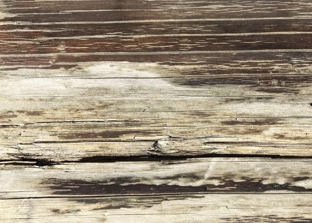 劣化した木材